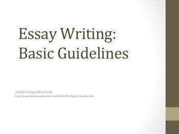 Some Samples of the Essay Introduction - MasterPapers